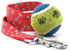 Image Displayed - Dog Leash, Tennis Ball